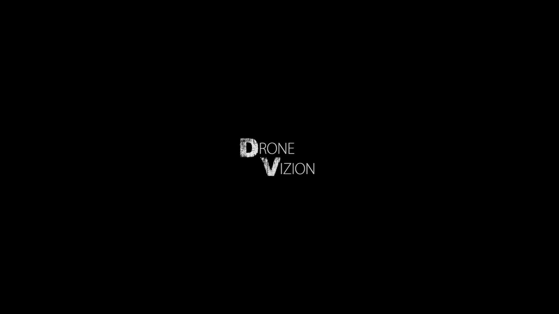 logo drone vizion